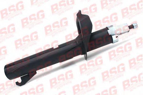 Амортизатор BSG BSG 30-300-013