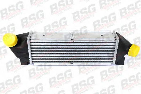Интеркулер BSG BSG 30-535-001