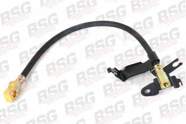 Тормозной шланг BSG BSG 30-730-010