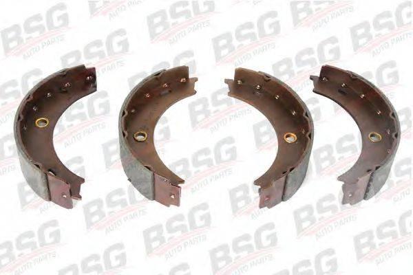 Комплект тормозных колодок, стояночная тормозная система BSG BSG 60-205-004