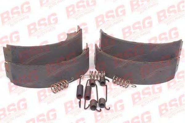 Комплект тормозных колодок, стояночная тормозная система BSG BSG 60-205-005