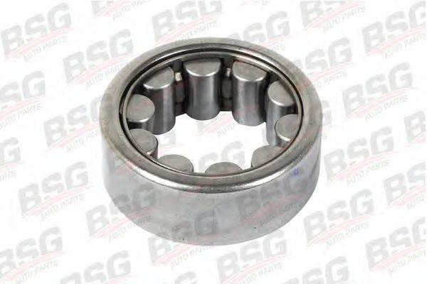 Комплект подшипника ступицы колеса BSG BSG 30-605-017