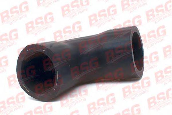 Трубка нагнетаемого воздуха BSG BSG 30-720-099